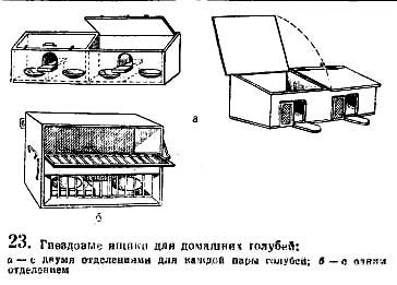 Гнездовые ящики для домашних голубей